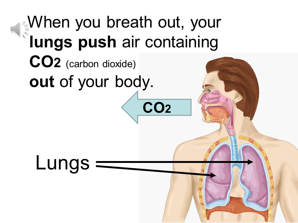When you breath out, your lungs push air containing CO2 (carbon dioxide) out of your body.