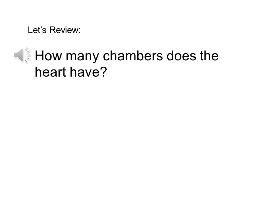 How many chambers does the heart have