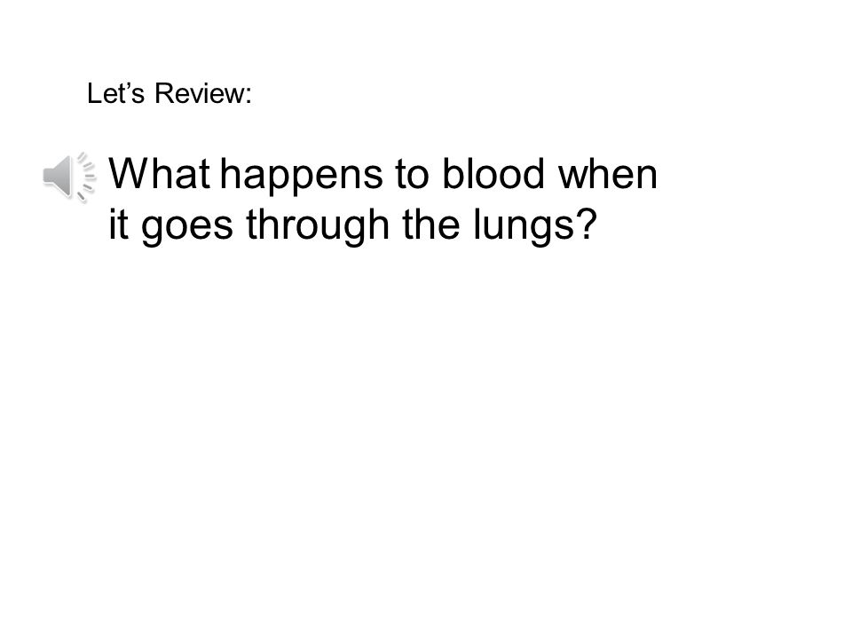 What happens to blood when it goes through the lungs