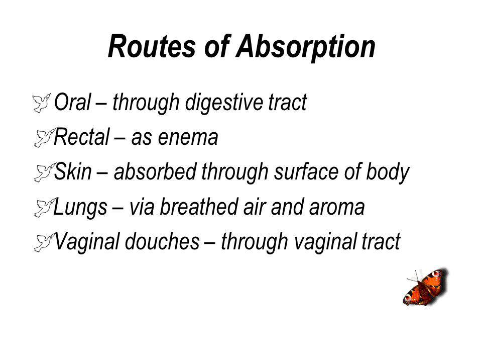 Routes of Absorption Oral – through digestive tract