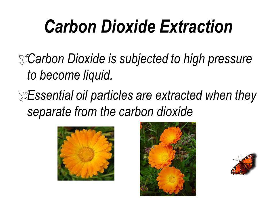 Carbon Dioxide Extraction
