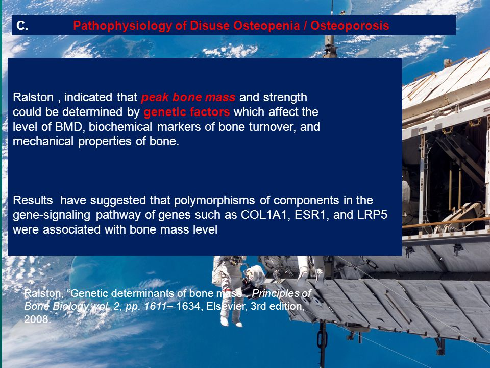 C. Pathophysiology of Disuse Osteopenia / Osteoporosis