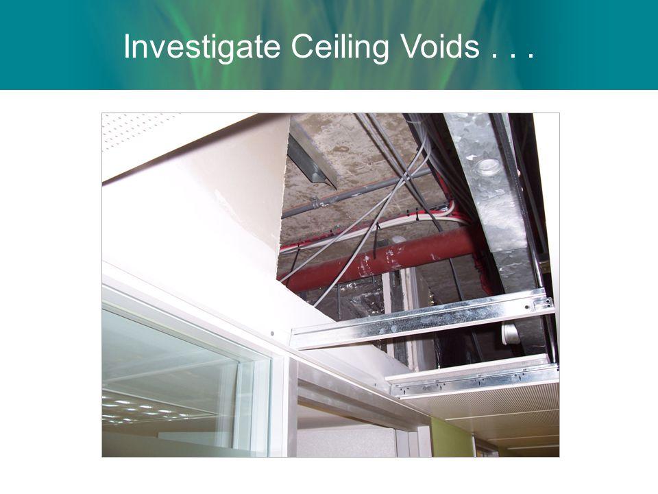 Investigate Ceiling Voids . . .