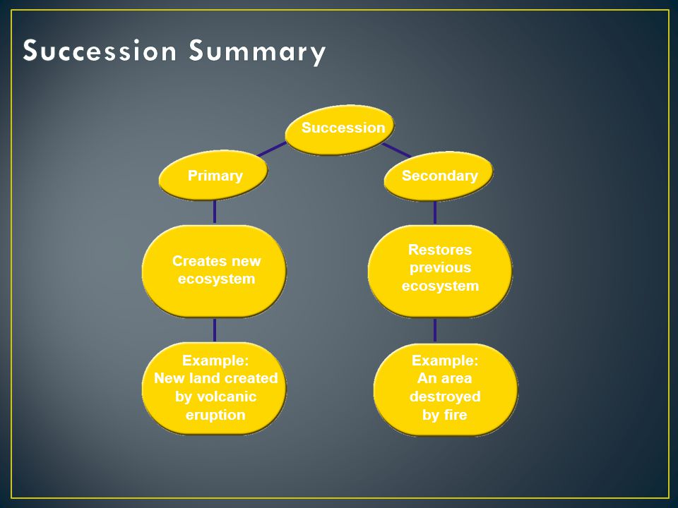 Succession Summary Succession Primary Secondary Creates new ecosystem
