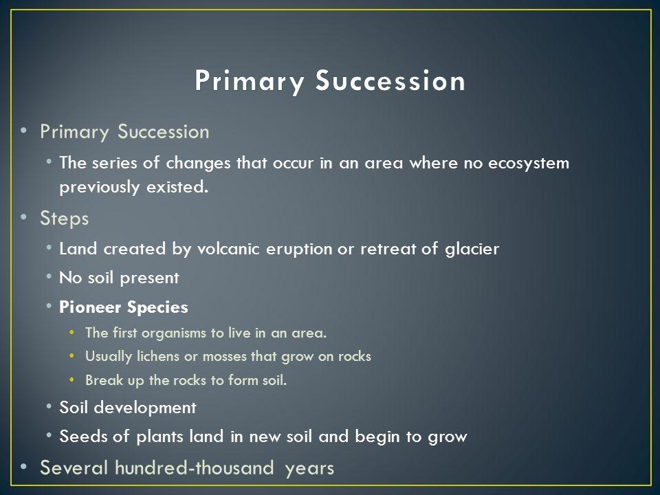 Primary Succession Primary Succession Steps