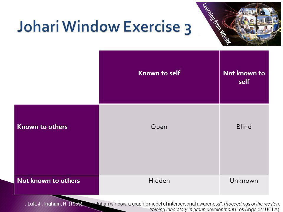 Johari Window Exercise 3