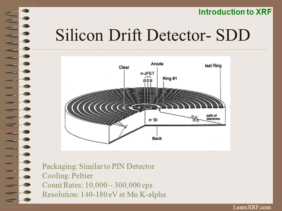 Silicon Drift Detector- SDD