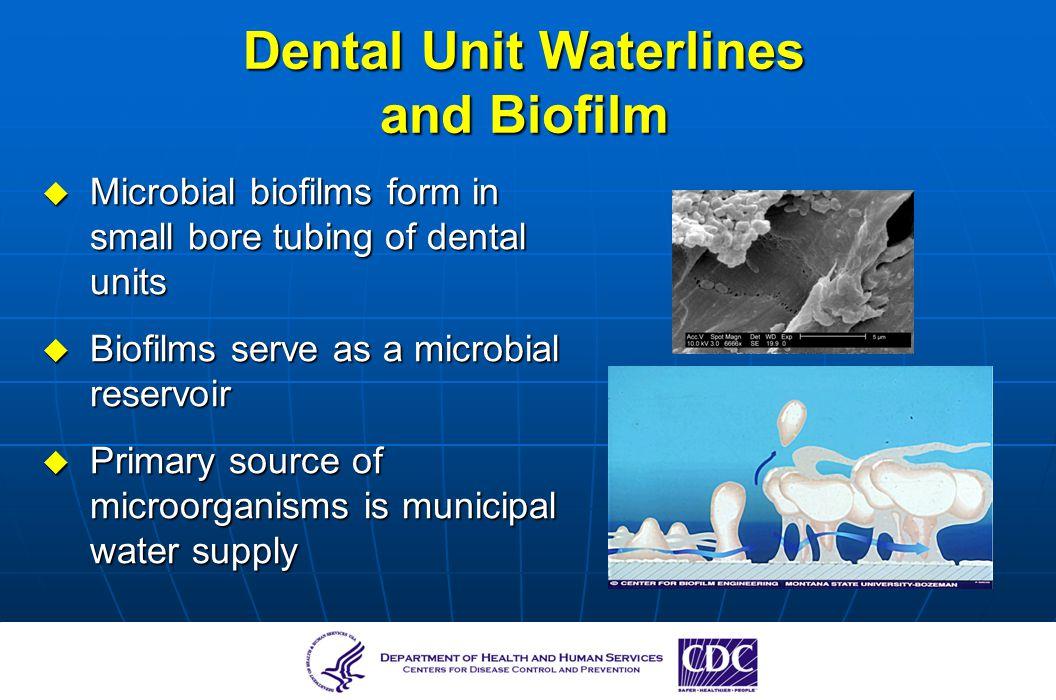 Dental Unit Waterlines and Biofilm