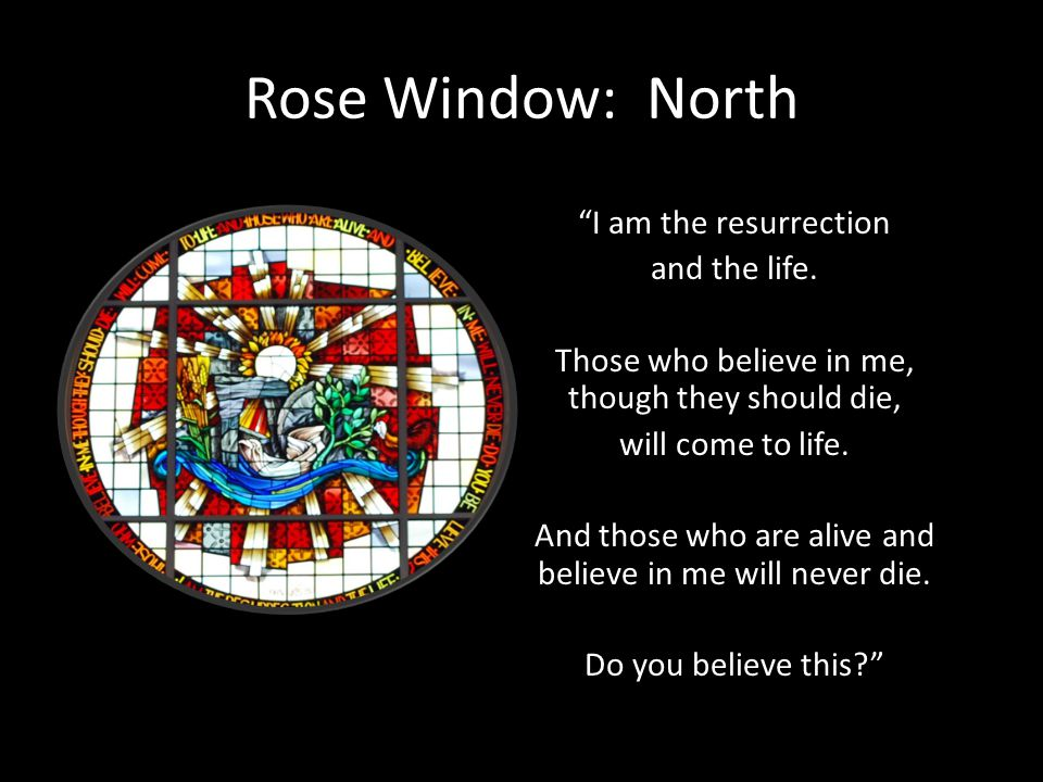 Rose Window: North