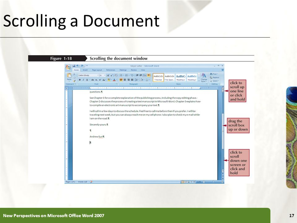 Scrolling a Document New Perspectives on Microsoft Office Word 2007