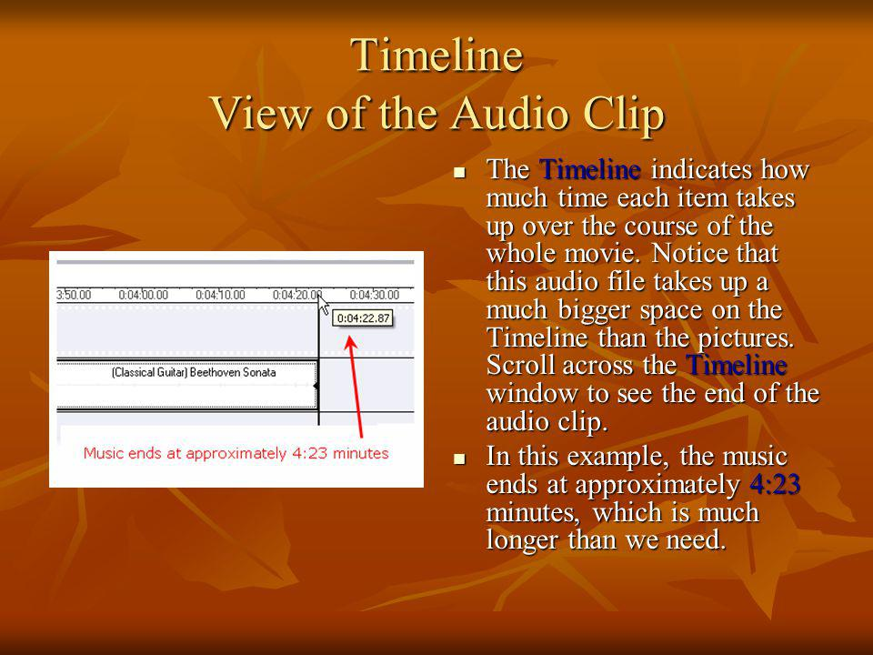 Timeline View of the Audio Clip