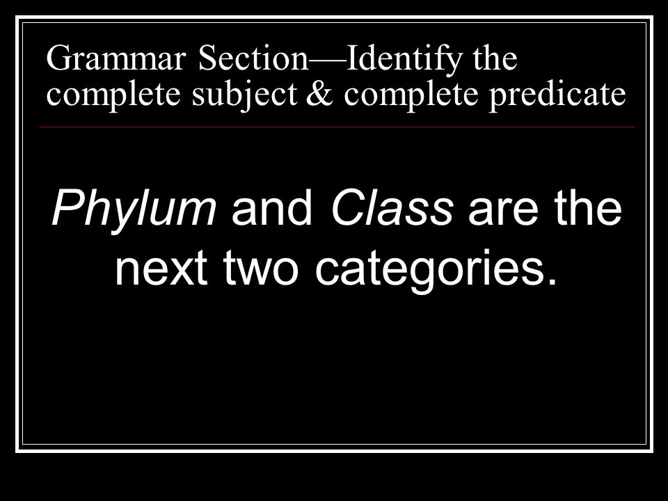 Phylum and Class are the next two categories.