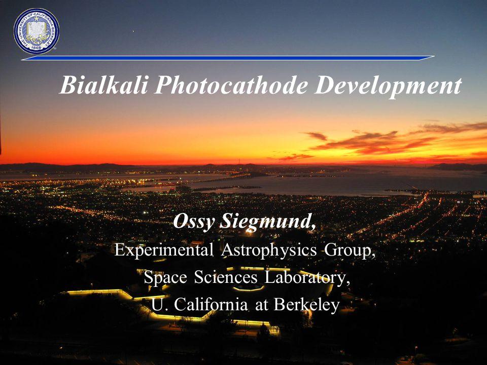 Bialkali Photocathode Development
