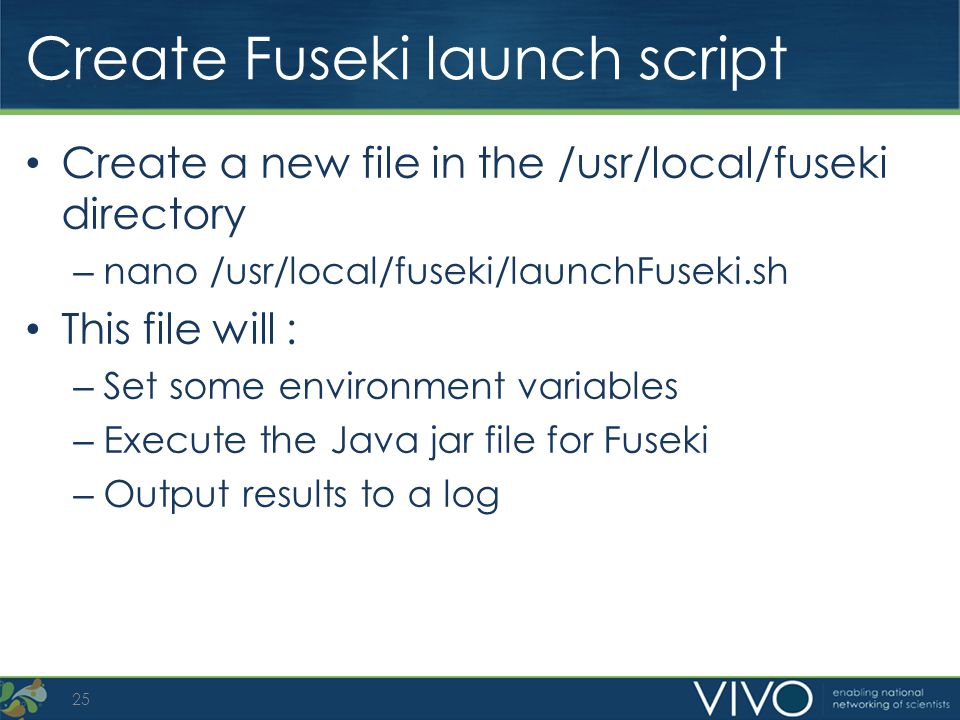 Create Fuseki launch script