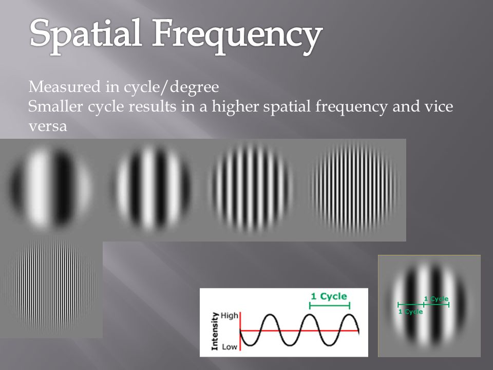Spatial Frequency Measured in cycle/degree