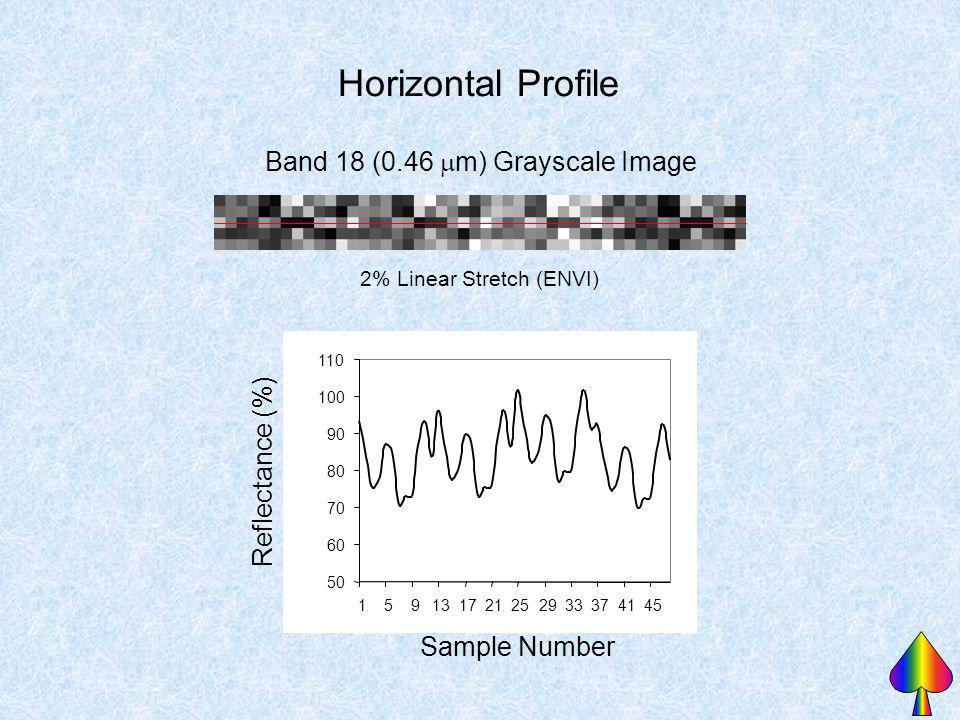Horizontal Profile Band 18 (0.46 mm) Grayscale Image Reflectance (%)