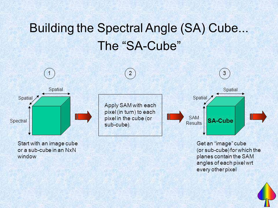 Building the Spectral Angle (SA) Cube...
