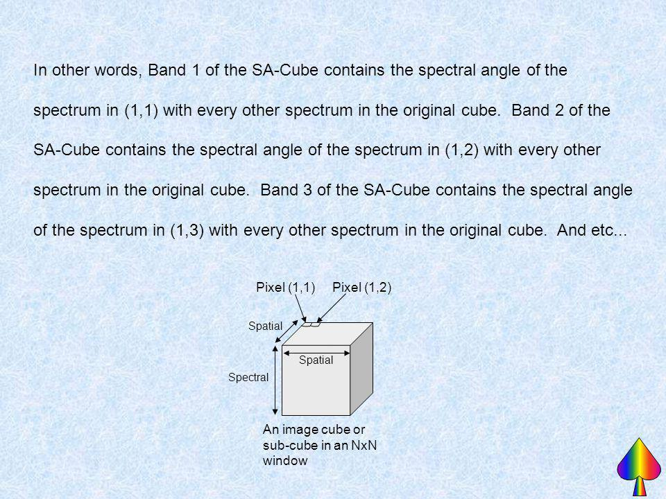 In other words, Band 1 of the SA-Cube contains the spectral angle of the