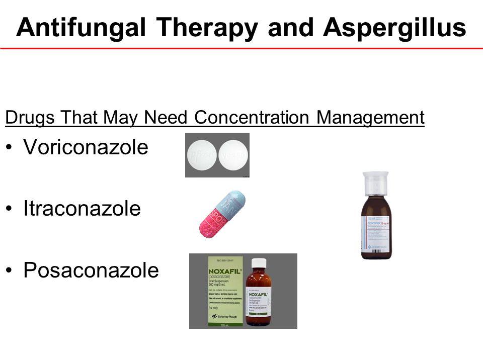 Antifungal Therapy and Aspergillus