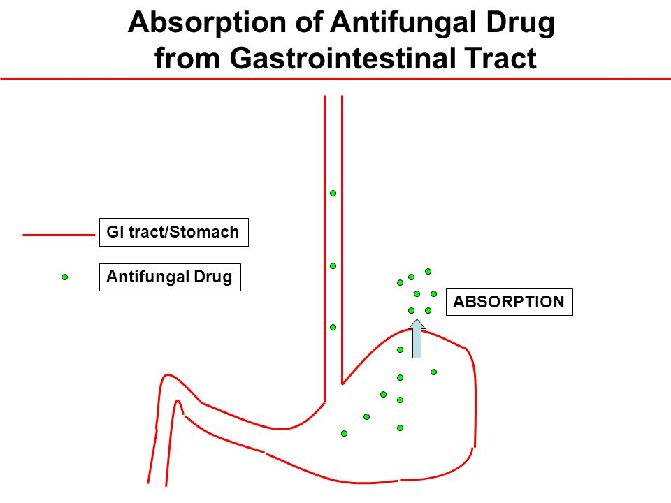 Absorption of Antifungal Drug from Gastrointestinal Tract