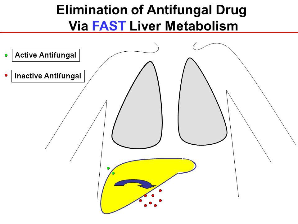 Elimination of Antifungal Drug Via FAST Liver Metabolism