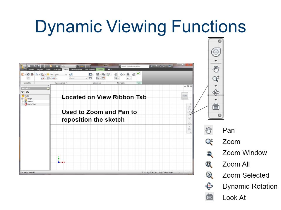 Dynamic Viewing Functions