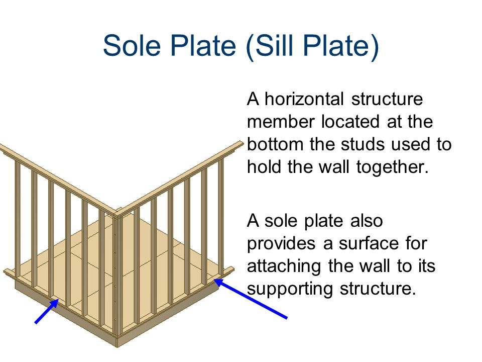 Sole Plate (Sill Plate)