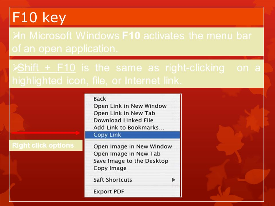 F10 key In Microsoft Windows F10 activates the menu bar of an open application.