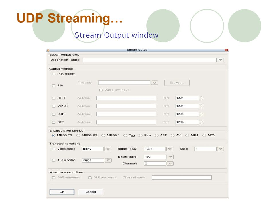 UDP Streaming… Stream Output window
