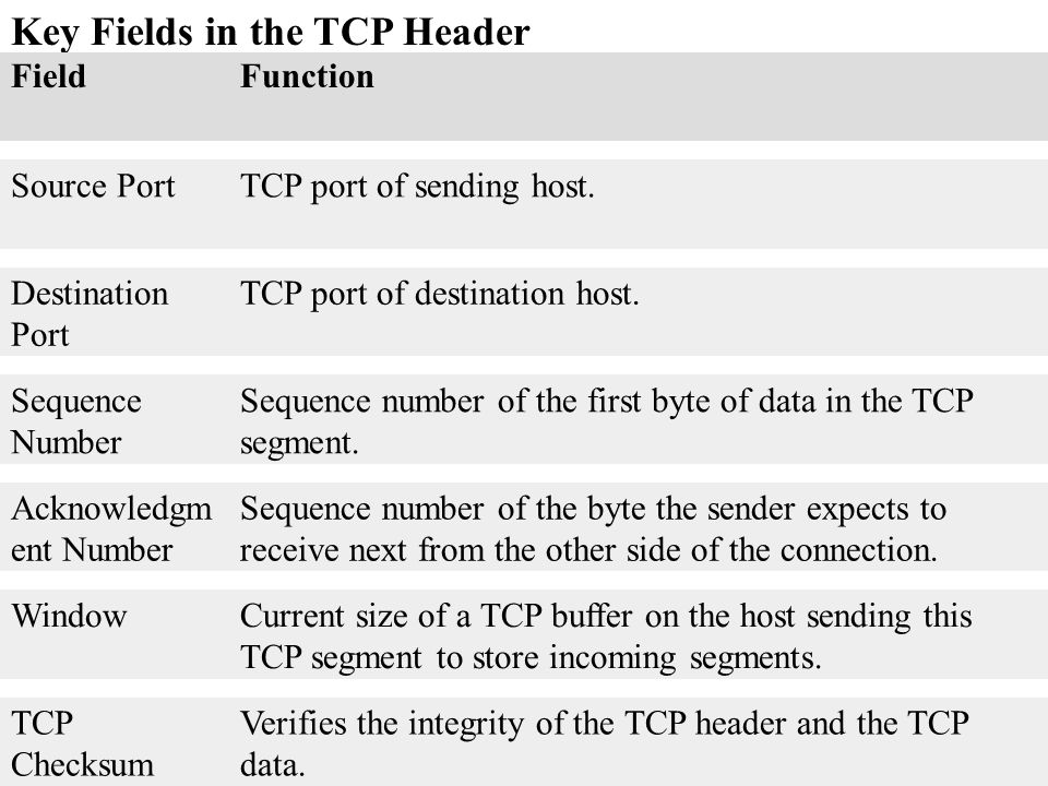 Key Fields in the TCP Header