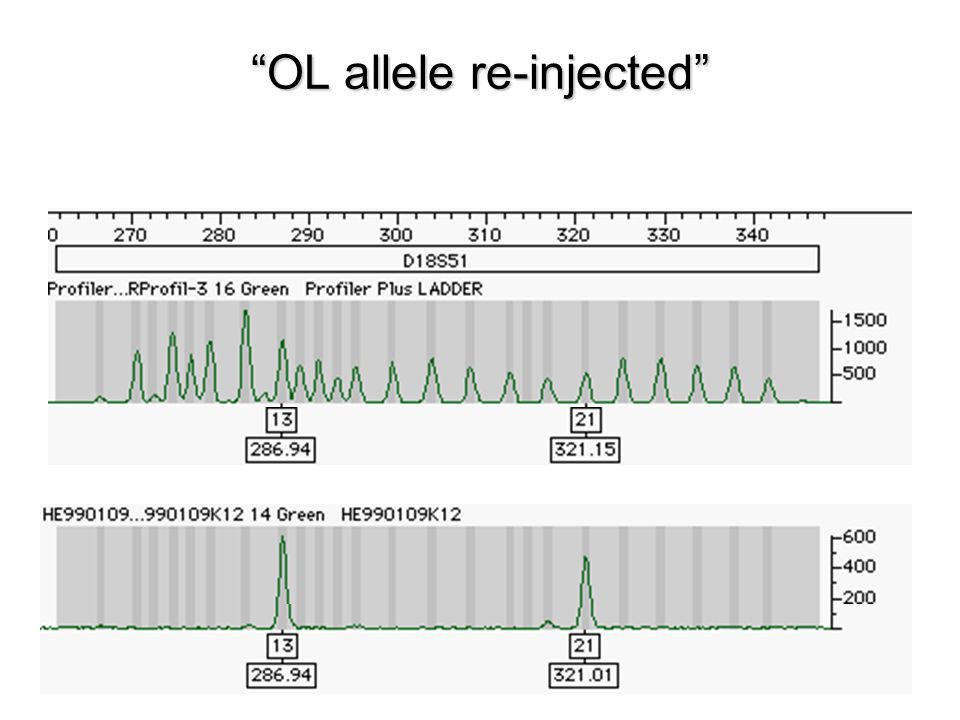OL allele re-injected