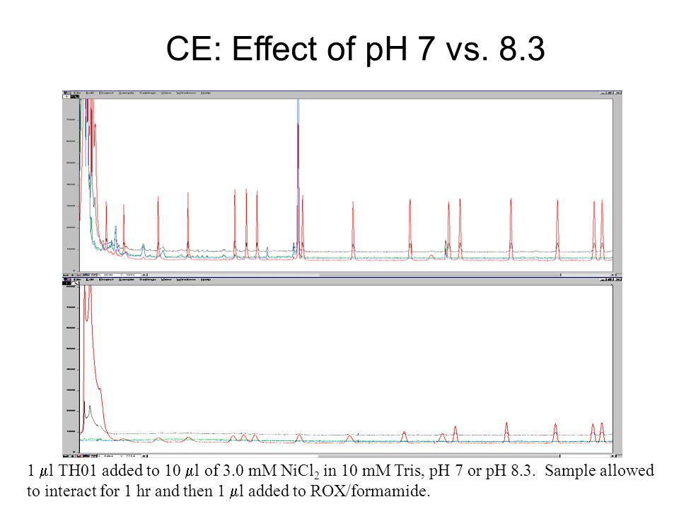 CE: Effect of pH 7 vs. 8.3 Ni-counterion TH01 (pH 7) Ni-intercalated TH01 (pH 8.3)