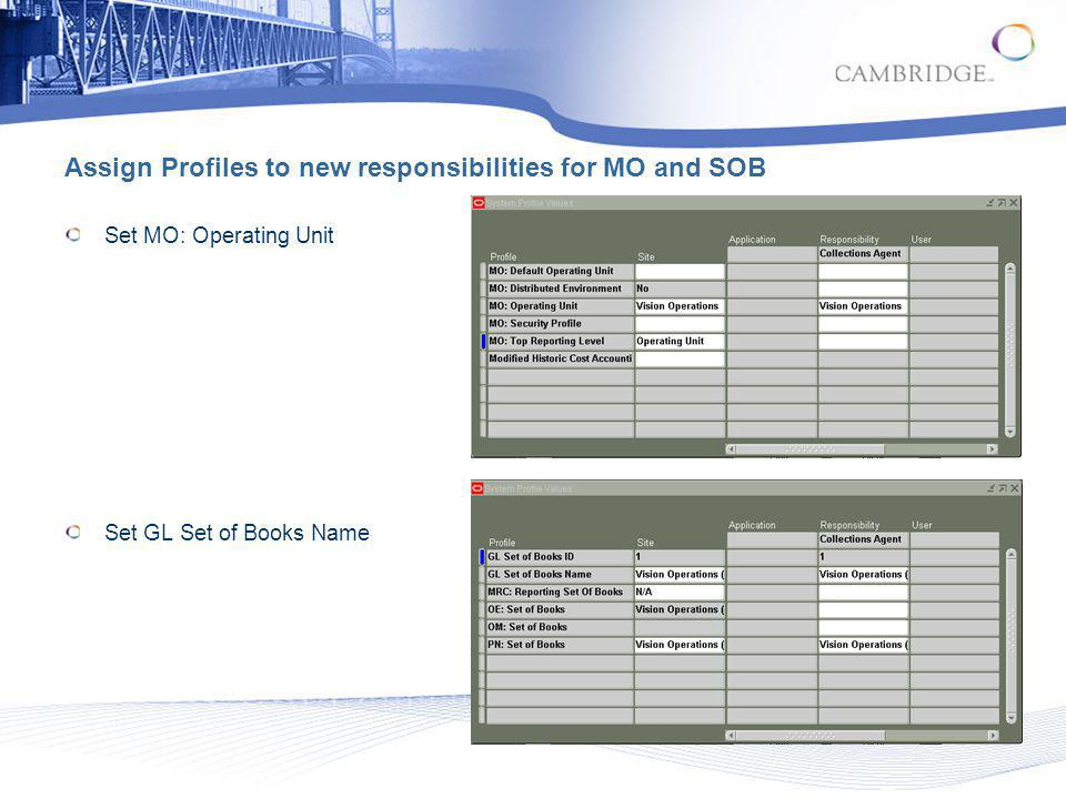 Assign Profiles to new responsibilities for MO and SOB