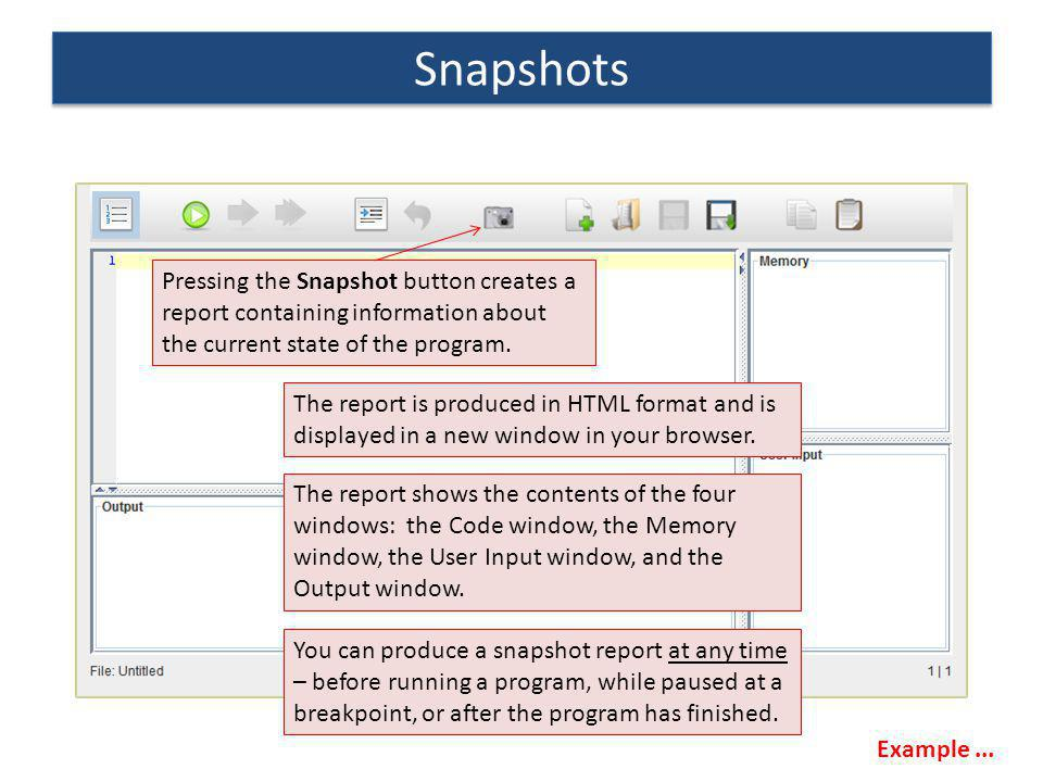 Snapshots Pressing the Snapshot button creates a report containing information about the current state of the program.