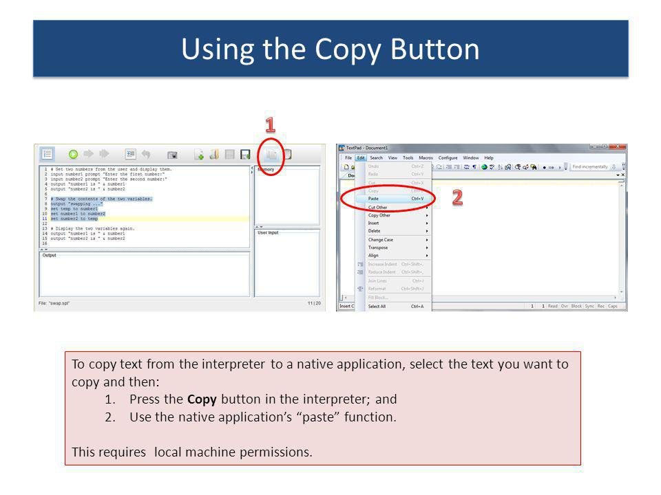 Using the Copy Button 1. 2. To copy text from the interpreter to a native application, select the text you want to copy and then: