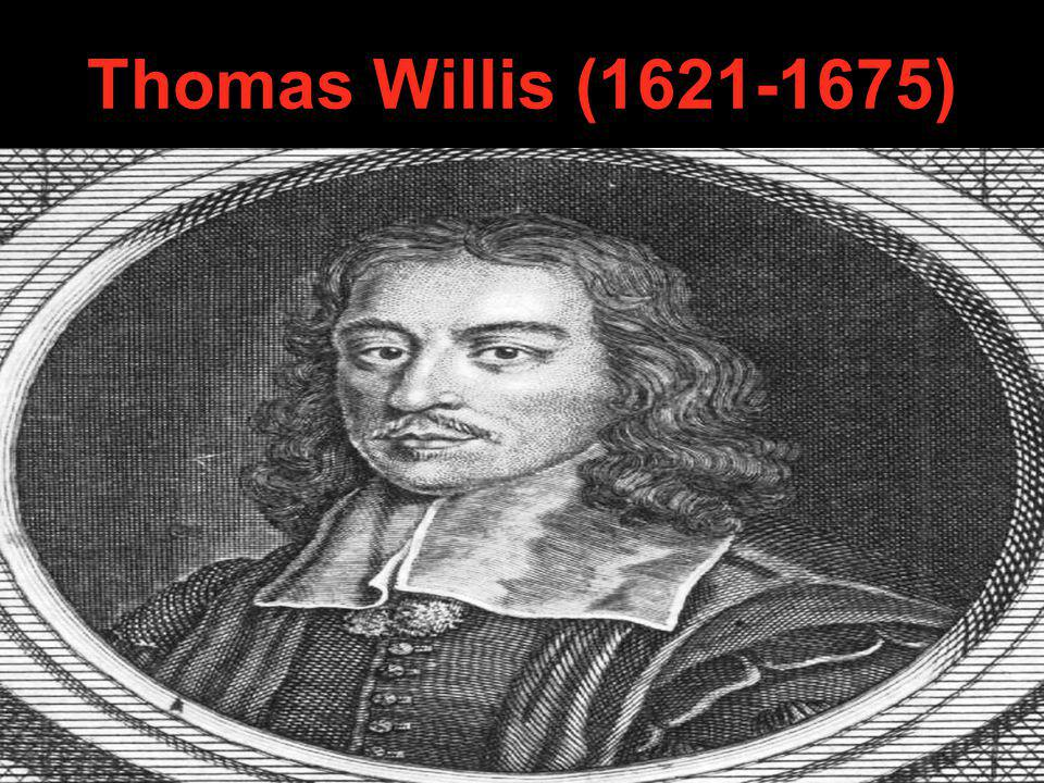 Thomas Willis (1621-1675)