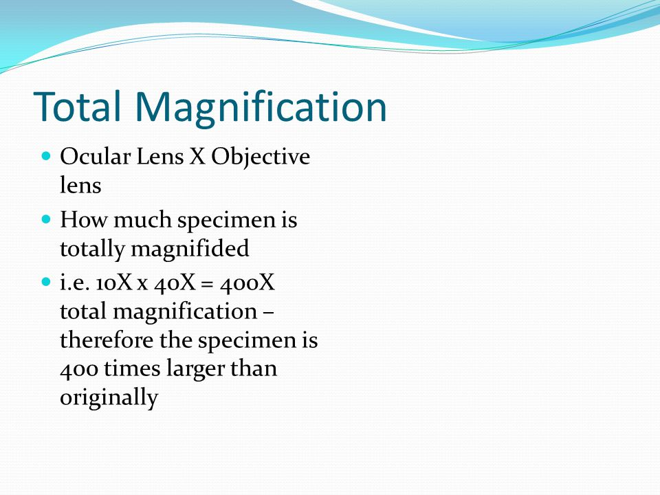Total Magnification Ocular Lens X Objective lens
