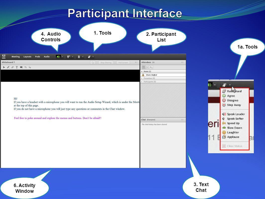 Participant Interface
