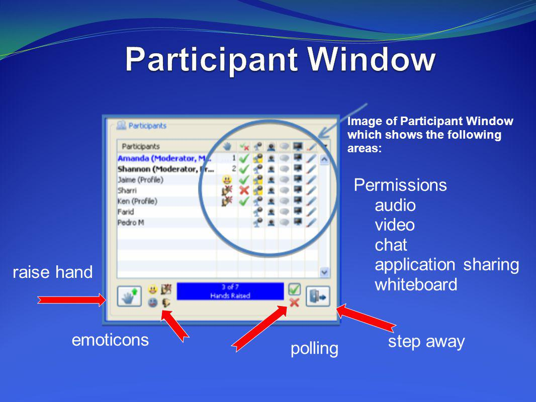 Participant Window Permissions audio video chat application sharing