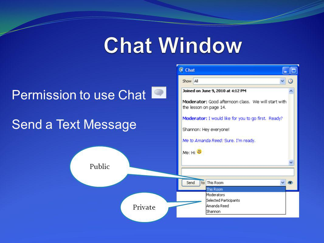 Chat Window Permission to use Chat Send a Text Message Public Private