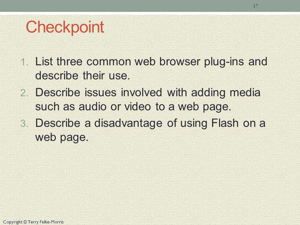 Checkpoint List three common web browser plug-ins and describe their use.