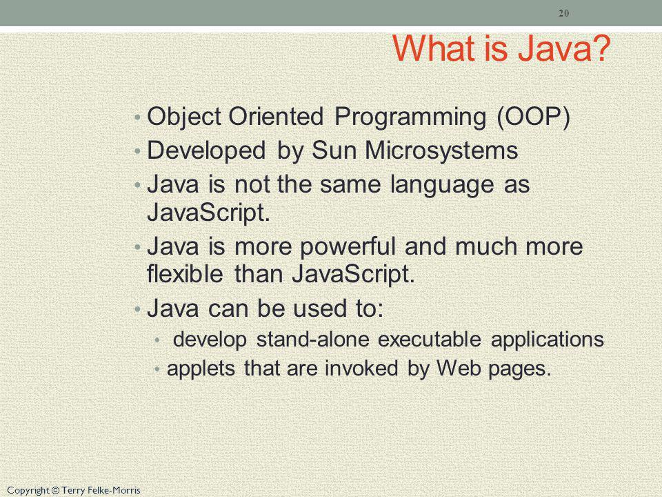 What is Java Object Oriented Programming (OOP)