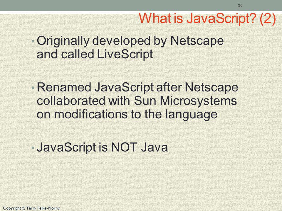 What is JavaScript (2) Originally developed by Netscape and called LiveScript.