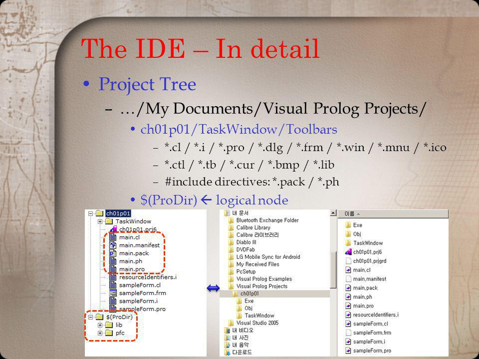 The IDE – In detail Project Tree
