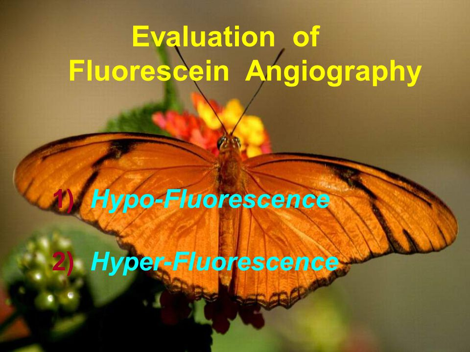 Evaluation of Fluorescein Angiography