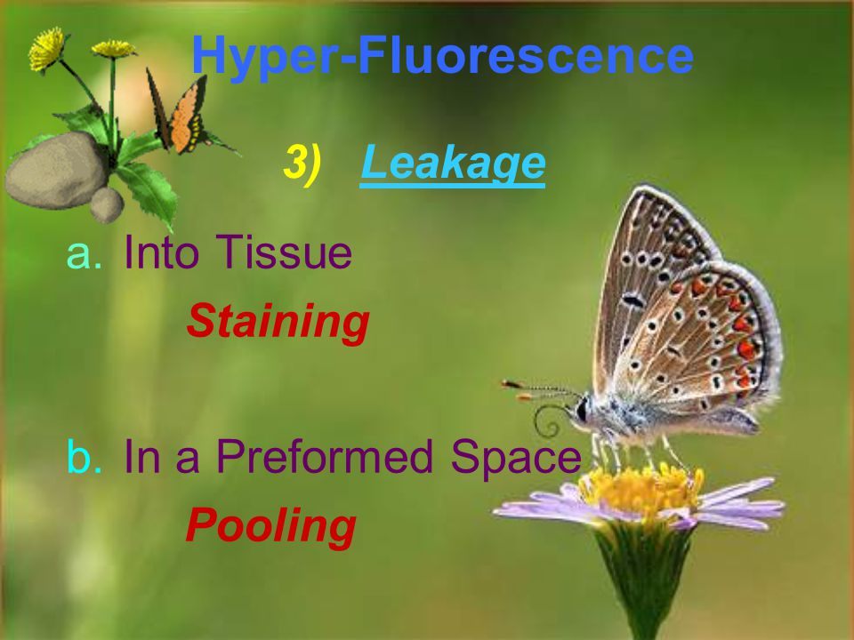 Hyper-Fluorescence Leakage Into Tissue Staining In a Preformed Space