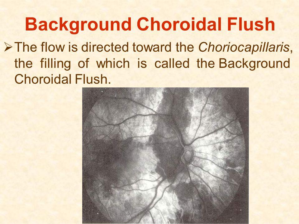 Background Choroidal Flush