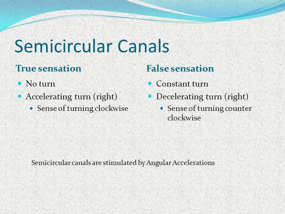 Semicircular Canals True sensation False sensation No turn