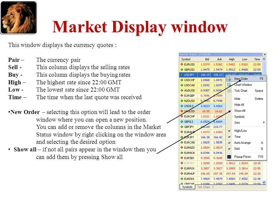 Market Display window This window displays the currency quotes :