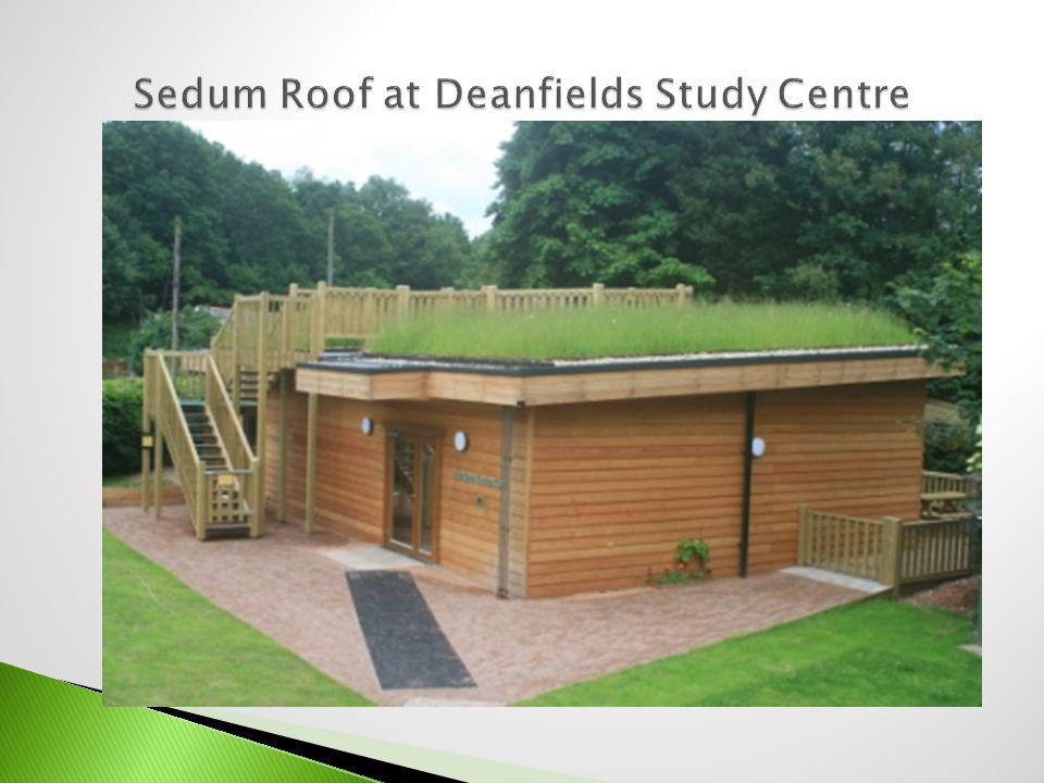 Sedum Roof at Deanfields Study Centre
